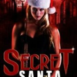 Review: Secret Santa by Sierra Dean