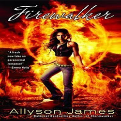 Josh Reviews: Firewalker by Allyson James