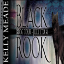Spotlight + Giveaway: Black Rook by Kelly Meade