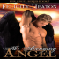 Review: Her Avenging Angel by Felicity Heaton