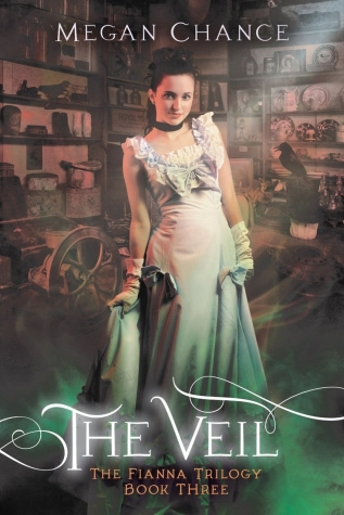 The Veil by Megan Chance