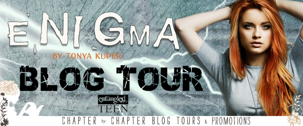 Enigma Blog Tour Banner