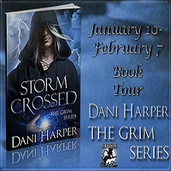 Interview and Giveaway: Storm Crossed by Dani Harper (@Dani_Harper, @RoxanneRhoads)